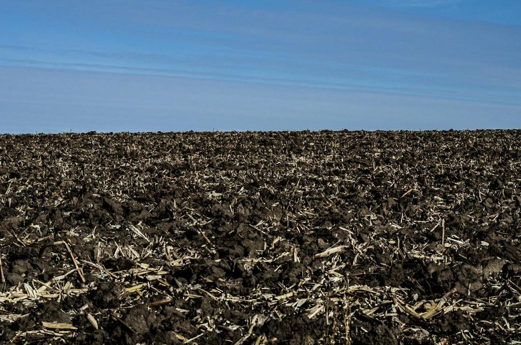 Rock County farmland